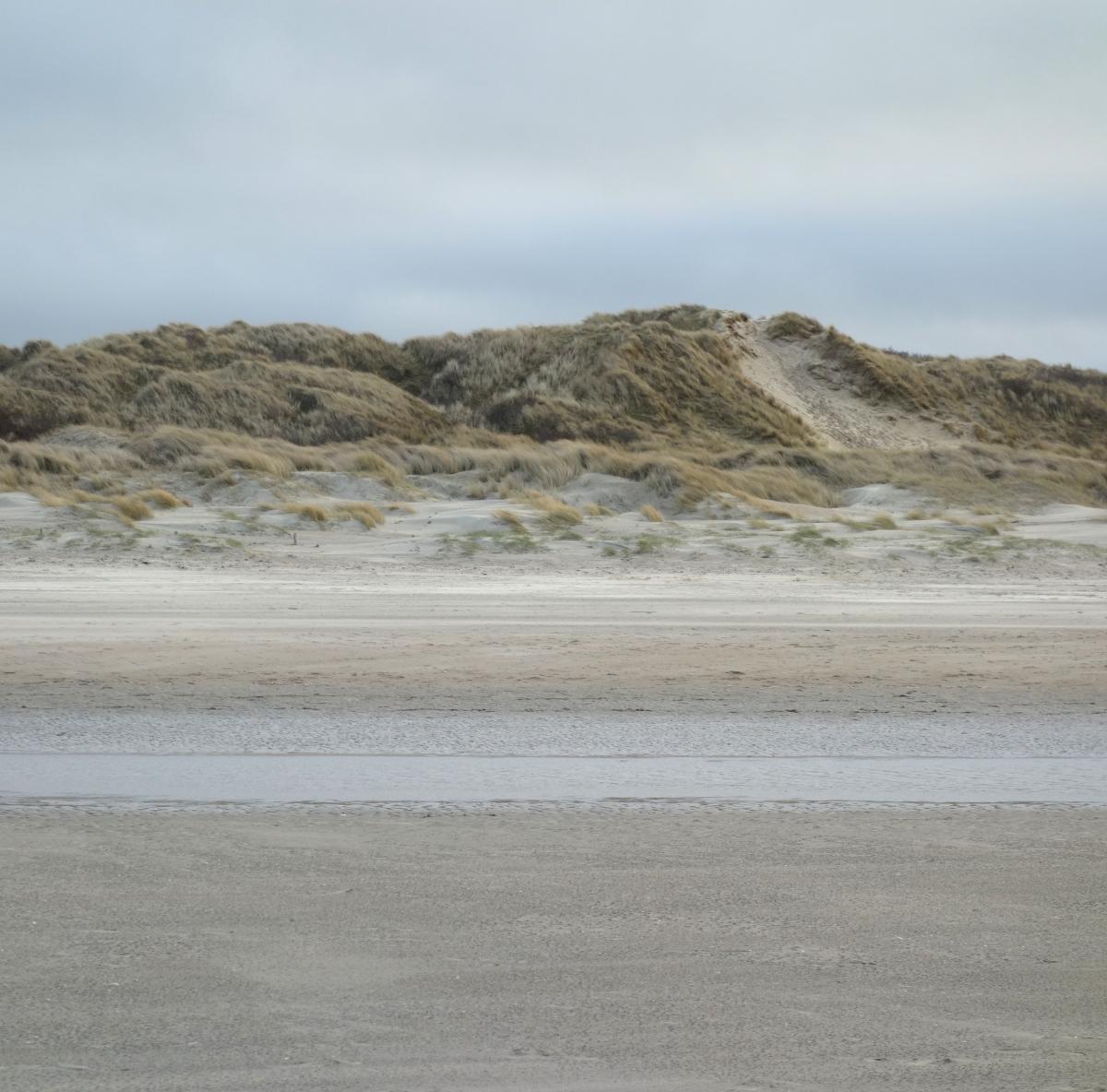 Pilootgebied Oostenduinkerke-Groenendijk